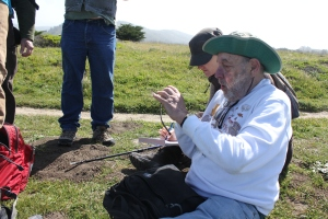 Don Mayall records GPS data for Franciscan wallflowers at Rockaway Headlands